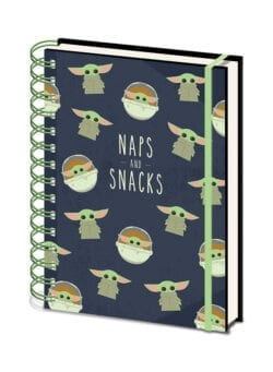 naps and snacks notes